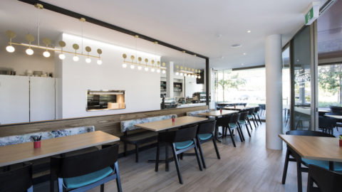 Sophias Cafe For Swancare